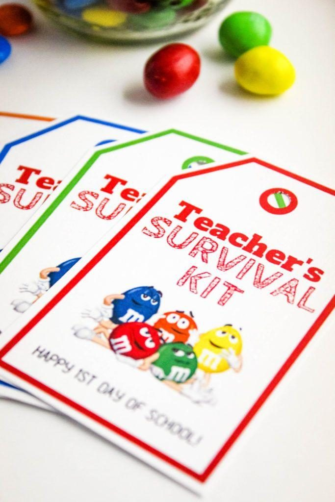 photograph relating to Teacher Survival Kit Printable referred to as Again in direction of University Lecturers Survival Package with Totally free Printable